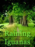 Raining Iguanas