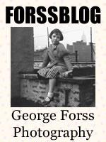 Forssblog