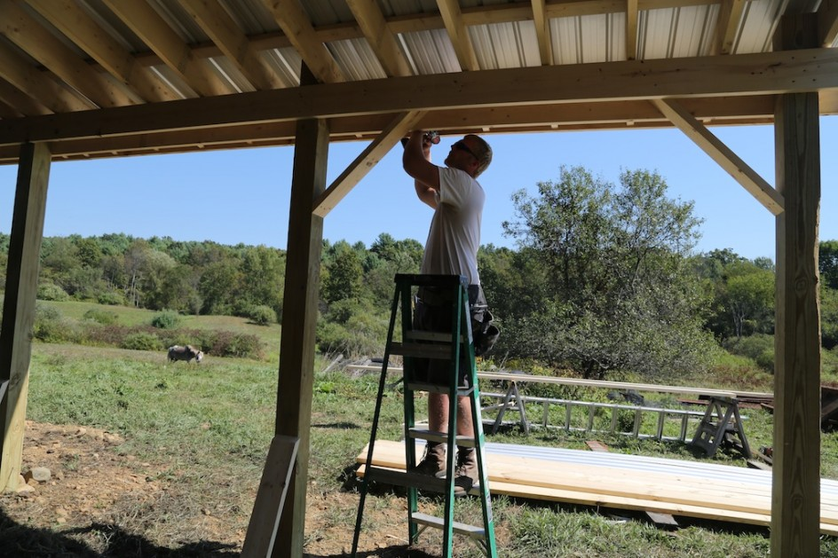 how to build a small pole shed