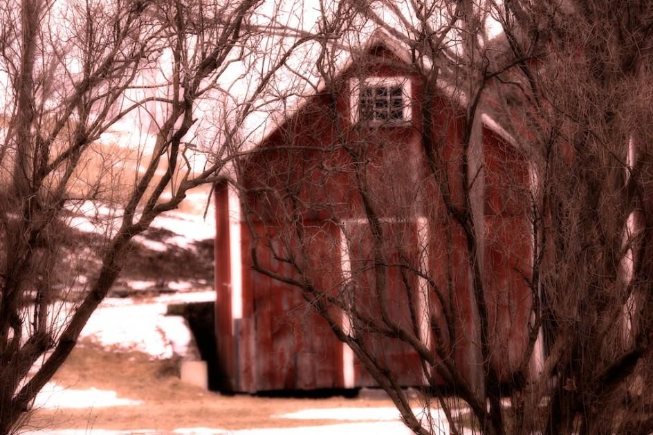 Standing Barn