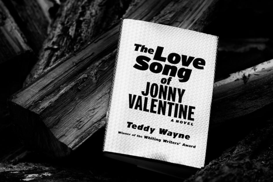 Novel by Teddy Wayne