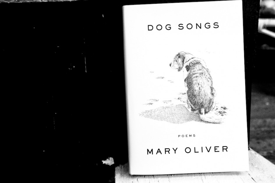 """Review: """"Dog Songs"""""""