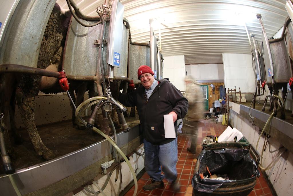 Bonus Video Breeding A Cow The Milking Experience