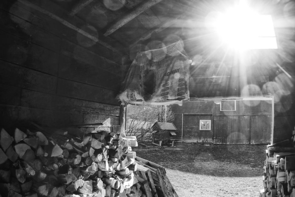 Inside The Woodshed