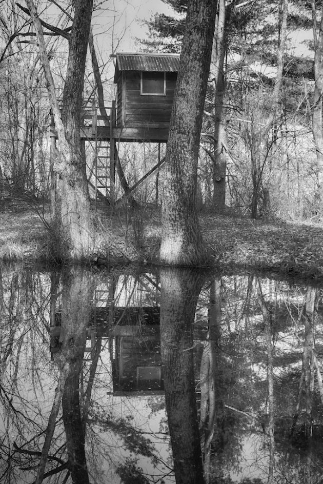 Treehouse At The Pond