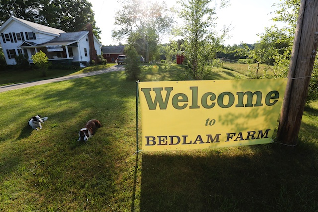Welcome To Bedlam Farm