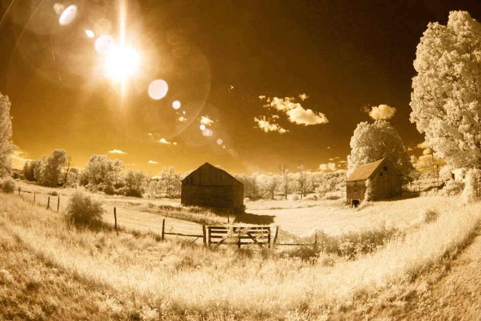 Afternoon Sun. Infrared Photography. Unseen World ...
