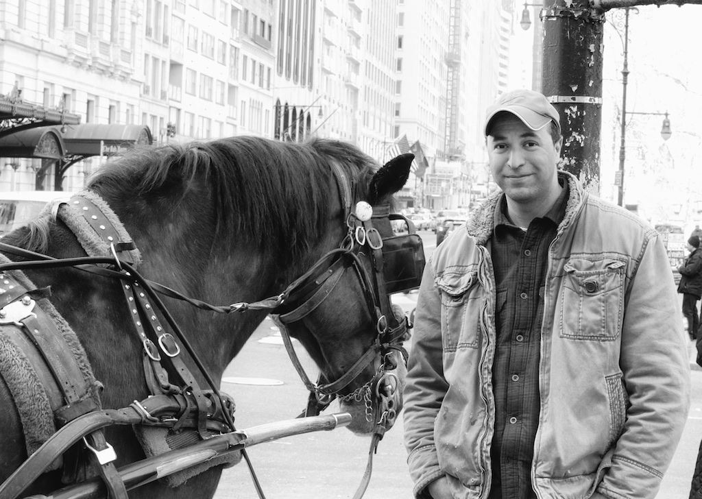 Be A Friend To The New York Carriage Horses - Bedlam Farm