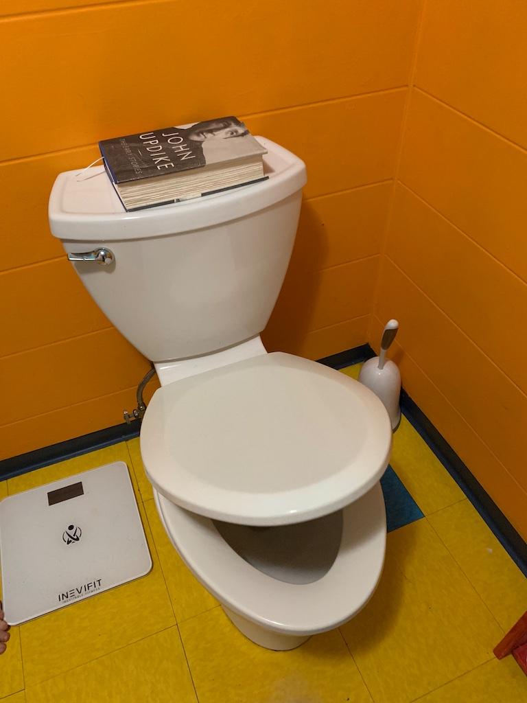Toilet Bowl Seats: The Metaphors Of My Life - Bedlam Farm